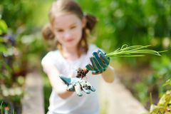 Adorable little girl wearing straw hat playing with her toy garden tools in a greenhouse Stock Image