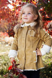 Adorable little girl is wearing winter clothes. Adorable happy little girl is wearing winter clothes with autumn leaves on the nature Royalty Free Stock Image