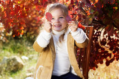 Adorable little girl is wearing winter clothes. Adorable happy smiling little girl is wearing winter clothes is sitting on the chair with autumn leaves on the Royalty Free Stock Photos