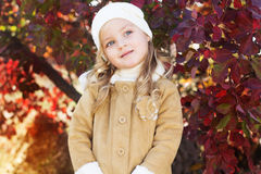 Adorable little girl is wearing winter clothes. Portrait of adorable little girl is wearing winter clothes with autumn leaves on the nature Stock Image