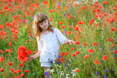 Adorable little girl in white dress playing in poppy flower field. Child picking red poppies. Toddler kid having fun in summer me royalty free stock photography