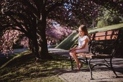 Adorable little girl in white dress in blooming pink garden on beautiful spring day stock images