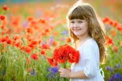 Adorable little girl with wild red flowers bouquet royalty free stock photos
