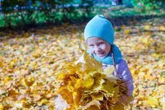 Adorable little girl with yellow maple leaves Royalty Free Stock Photo