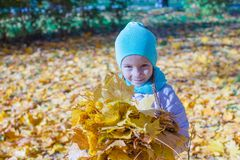 Adorable little girl with yellow maple leaves Stock Photo