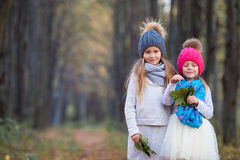 Adorable little girls with autumn leaves in the. Adorable little girls at beautiful autumn day outdoors Stock Photography
