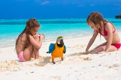 Adorable little girls at beach with big colorful Royalty Free Stock Photo