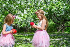 Adorable little girls with big red apple in. Little adorable girls with butterfly wings under blossoming apple tree Royalty Free Stock Photography