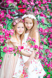 Adorable little girls in blooming apple tree garden on spring day stock photography
