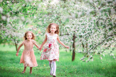 Adorable little girls in blooming cherry tree garden on spring day Stock Photo