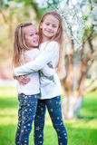 Adorable little girls in blooming cherry tree garden on spring day Royalty Free Stock Photography