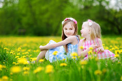 Adorable little girls having fun together in blooming dandelion meadow Stock Photography