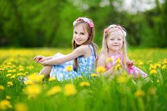 Adorable little girls having fun together in blooming dandelion meadow Royalty Free Stock Image