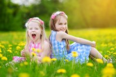 Adorable little girls having fun together in blooming dandelion meadow Royalty Free Stock Photos