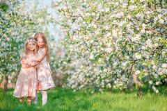 Free Adorable Little Girls In Blooming Apple Tree Garden On Spring Day Stock Images - 184400164