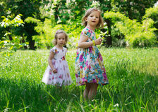 Adorable little girls (sisters) in the summer garden. Royalty Free Stock Image