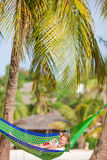 Adorable little girls on tropical vacation relaxing in hammock Royalty Free Stock Image