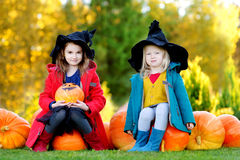 Adorable little girls wearing halloween costume having fun on a pumpkin patch Stock Images
