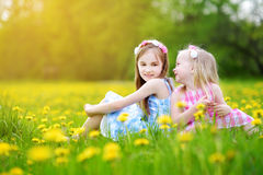 Adorable little girls wearing wreaths in blooming dandelion meadow on beautiful spring day Stock Photos