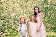 Adorable little girls with young mother in blooming cherry garden on beautiful spring day. Adorable little girls with young mother in blooming garden on stock photos