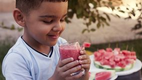 Adorable little kid boy drinking healthy fruits and vegetables juice smoothie in summer. Blond toddler tasting watermelon juice. stock photos