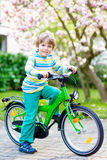 Adorable little kid boy driving his first bike or laufrad Royalty Free Stock Photo