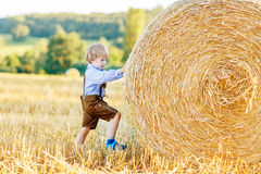 Adorable little kid boy having fun with hay stack on wheat field Royalty Free Stock Photo