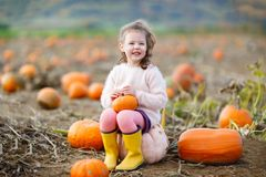 Adorable little kid girl having fun on pumpkin patch. Royalty Free Stock Photo