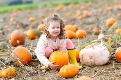 Adorable little kid girl having fun on pumpkin patch. Stock Photo