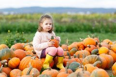 Adorable little kid girl having fun on pumpkin patch. Adorable little kid girl having fun on pumpkin patch farm. Traditional family festival with children Royalty Free Stock Photo