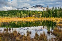 Adorable little lake Patricia Lake. Jasper National Park in the Rocky Mountains of Canada stock photography