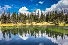 Adorable little lake in  warm summer day. Adorable little lake. Coniferous forest is reflected in the mirrored water. Warm summer day in Jasper National Park in Stock Photo