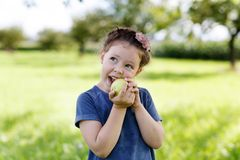 Adorable little preschool kid girl eating green apple on organic farm Stock Image