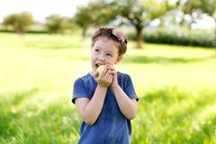 Adorable little preschool kid girl eating green apple on organic farm Royalty Free Stock Photo