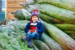Adorable little smiling kid boy holding Christmas tree on market. Happy healthy child in winter fashion clothes choosing stock photos