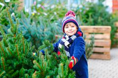 Adorable little smiling kid boy holding Christmas tree on market. Happy healthy child in winter fashion clothes choosing stock photo