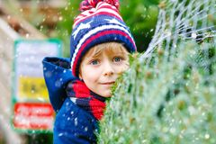 Adorable little smiling kid boy holding Christmas tree on market. Happy healthy child in winter fashion clothes choosing royalty free stock photography