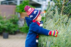 Adorable little smiling kid boy holding Christmas tree on market. Happy healthy child in winter fashion clothes choosing stock photography