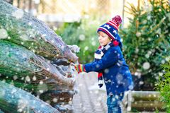 Adorable little smiling kid boy holding Christmas tree on market. Happy healthy child in winter fashion clothes choosing stock image