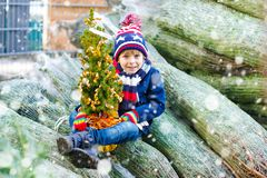 Adorable little smiling kid boy holding Christmas tree on market. Happy healthy child in winter fashion clothes choosing royalty free stock photo