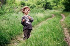 Adorable little toddler boy staying near the tree. Summer green grass, country road stock photography