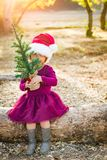 Adorable Mixed Race Young Baby Girl Having Fun With Santa Hat and Christmas Tree. Cute Mixed Race Young Baby Girl Having Fun With Santa Hat and Christmas Tree royalty free stock image