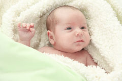 Adorable naked baby boy with blue eyes, lying on. An Adorable naked baby boy with blue eyes, lying on soft fur blanket Royalty Free Stock Images