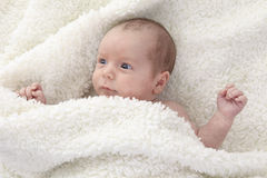 Adorable naked baby boy with blue eyes, lying on Stock Image