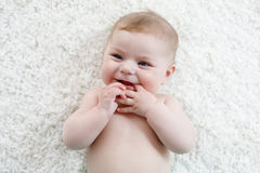 Adorable naked baby girl on white background. Stock Images
