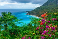 Adorable natural wild landscape with rocky mountains overgrown dense green jungle tree, palm and clear azure water of sea ocean stock image