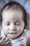 Adorable,new born baby curled up sleeping on a blanket, multiple Stock Photography