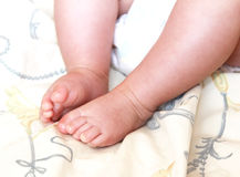 Adorable newborn baby feet royalty free stock image