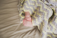 Adorable newborn baby feet Royalty Free Stock Photo