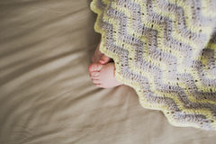 Adorable newborn baby feet Stock Image